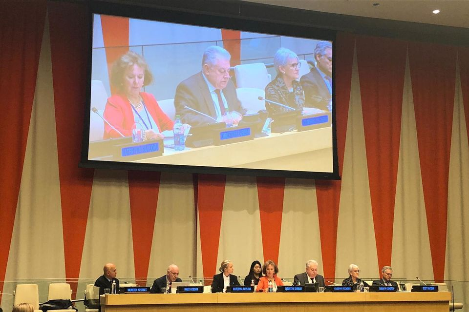 "Remarks by Mr. Volodymyr Yelchenko, Permanent Representative of Ukraine to the United Nations, at the 28th International Conference ""Achieving Sustainable Goals. Chornobyl at 33"""